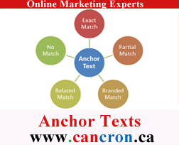 Anchor Texts Techniques Cancron inc
