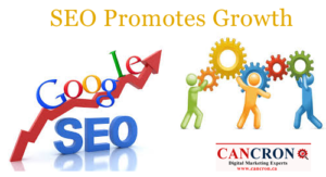 SEO Edmonton Promotes Growth