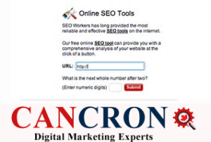 SEOworkers Cancron inc